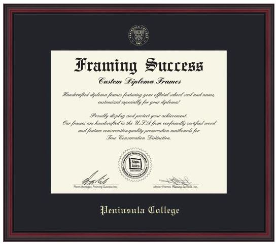 Image For BA Diploma Frame