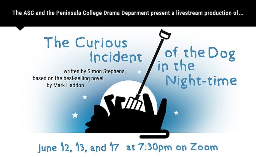 Image For June 17th The Curious Incident of The Dog in the Night-time